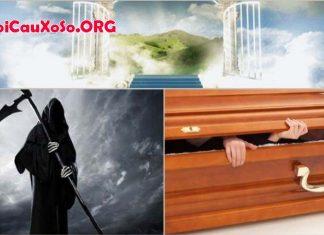Mơ thấy người chết sống lại đánh con gì
