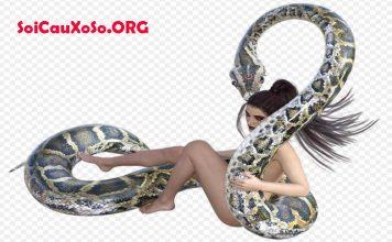 Mơ thấy rắn quấn người